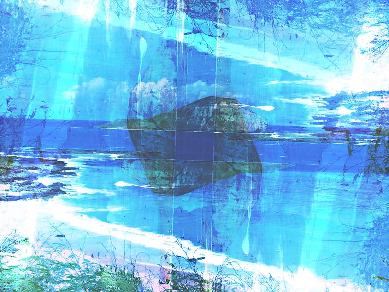 Rabbit-island-texture.jpg
