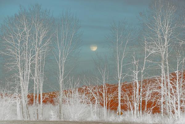 fantasy moon scene