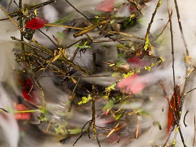 Autumn Maelstrom