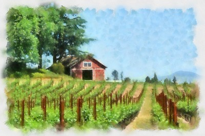 Sebastopol Vineyard - Copy_DAP_Watercolor