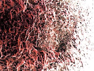 HI 2011 Maui 198 scarlet invert