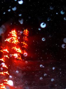 Snow 1206-53