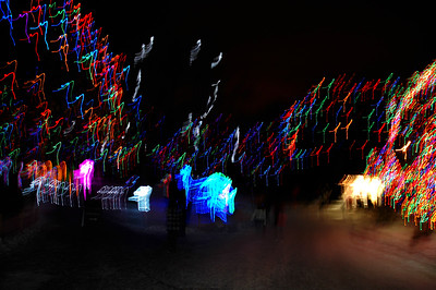 CO 2010 1231 Zoo Lights 6