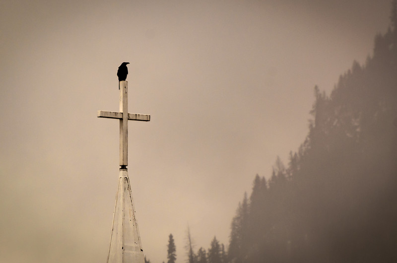 Crow and Cross