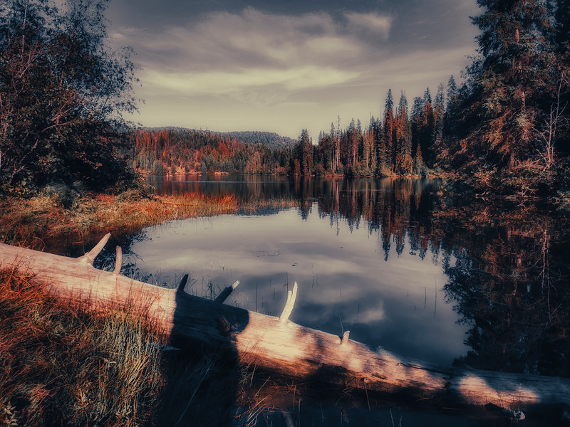 Lonely Lake