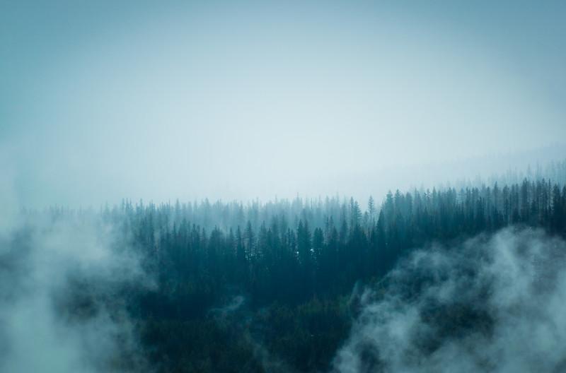 Cyan Mist