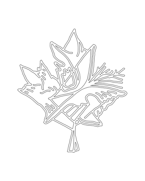 pg5856_1610292238a_8x8_canadian_maple_leaf_colouring_page_by_donald_lee