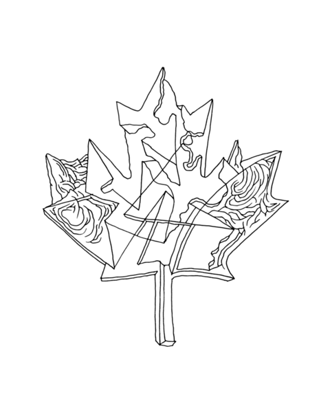 pg5877_1610082251_8x8_canadian_maple_leaf_colouring_page_by_donald_lee