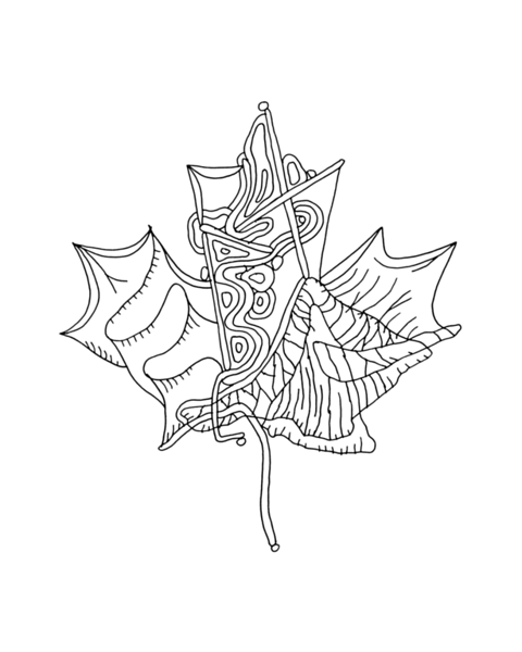 pg5917_1608061621_8x8_canadian_maple_leaf_colouring_page_by_donald_lee
