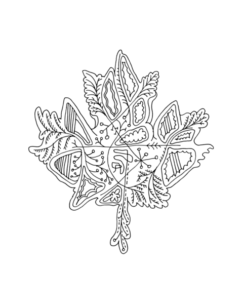 pg5875_1610101655_8x8_canadian_maple_leaf_colouring_page_by_donald_lee