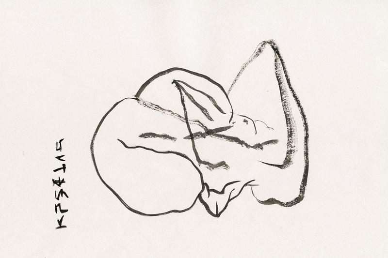 pg6064