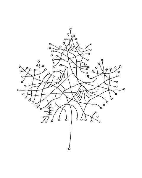 Free Canadian Maple Leaf Colouring Page with Abstract Drawing in Mind Form by Donald Lee
