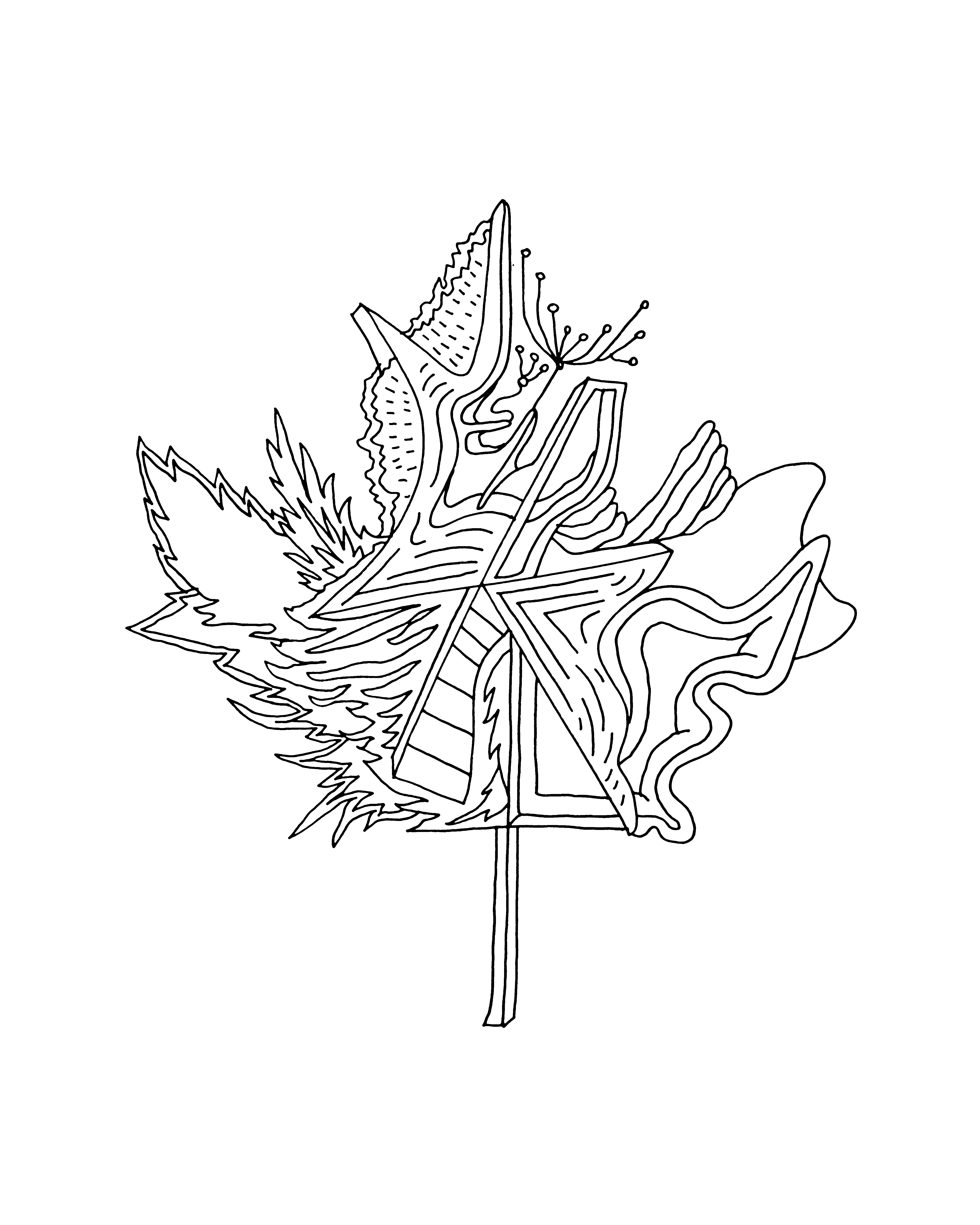 10000 Pages Canadian Maple Leaf Colouring Page 5944