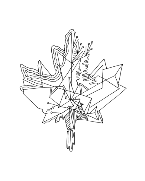 Canadian Maple Leaf Page with Abstract Drawing in Mind Form by Donald Lee