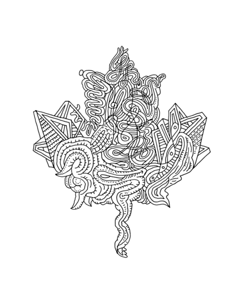 Canadian Maple Leaf Colouring Page 5932 Colouring Page with Abstract Drawing in Mind Form by Donald Lee