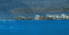 """Calm Seas""<br />  Miss Mana, Cove Marina, Norwalk, CT<br /> <br /> ~ Boatscape Collection ~"
