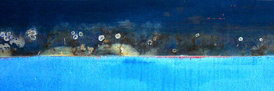 Beach Flowers ~ Boatscape Collection 2012