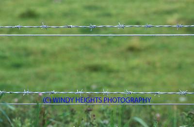 Barbed Wire Mizen Head July 2nd 2000