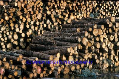 Logs Grangers 19-12-'93