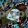Plate 12 Les Desoles Closeup_resize