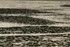 Raindrop Pattern, Milton Reservoir, CA