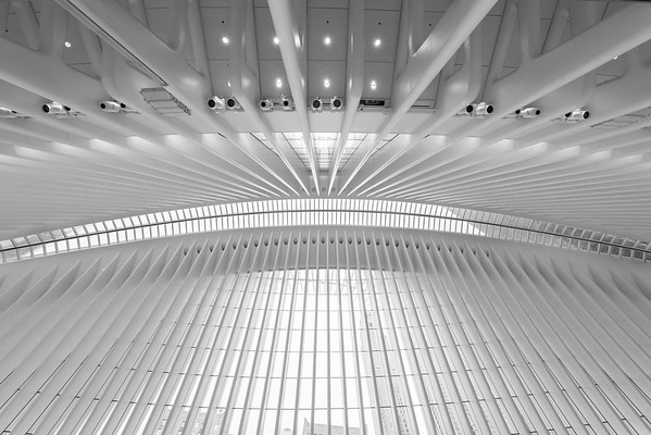 The Oculus. Manhattan, New York. USA. Sólo seis copias disponibles.