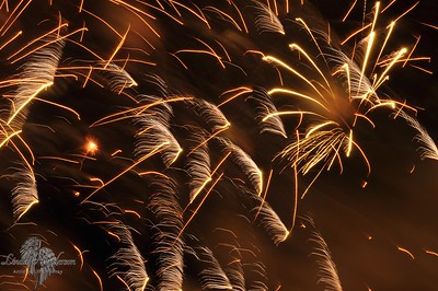 Fireworks Brown Abstract