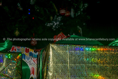 Auckland Christmas. (2 of 147)