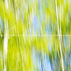 Nature abstract background spring colors