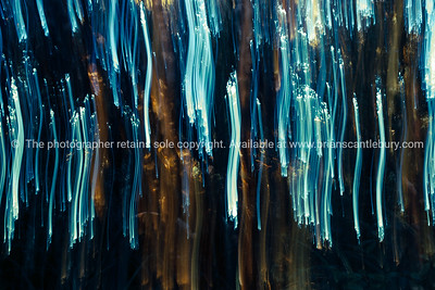 Nature abstract, motion blur forest background.