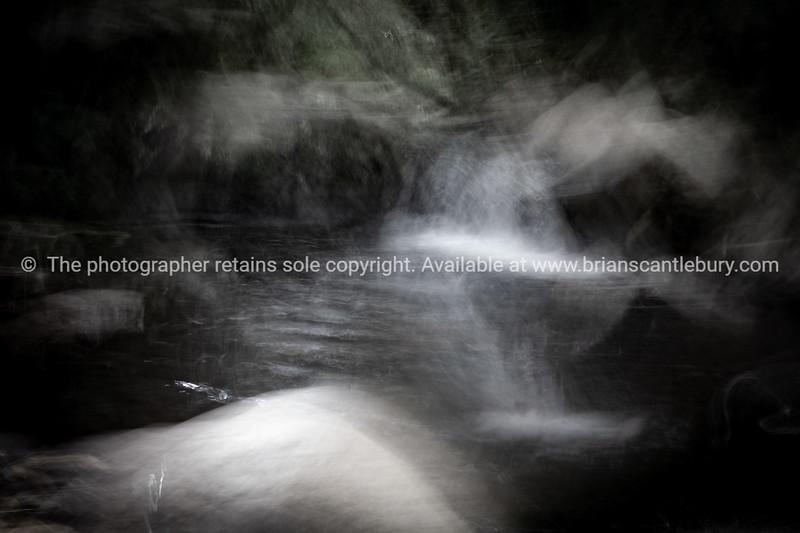 Stream through gorge deep in dark New Zealand forest