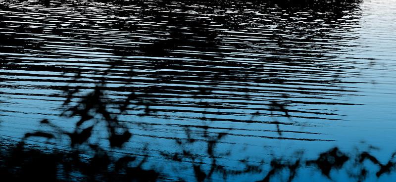 Water's edge copyrt 2013 margaret burgess