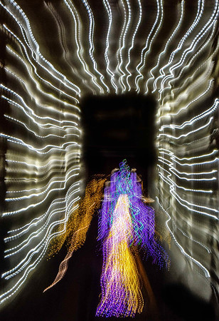 Bronx park, light painting