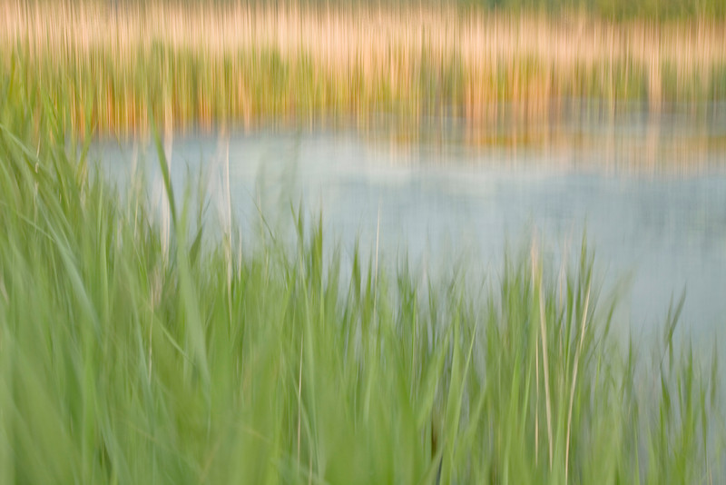 Pond with motion blur.<br /> 06/21/2011