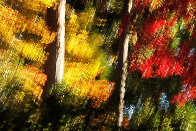 autumn-in-kyoto