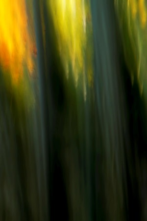Abstract photograph taken using ICM