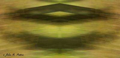 Abstract, mirrored autumn trees