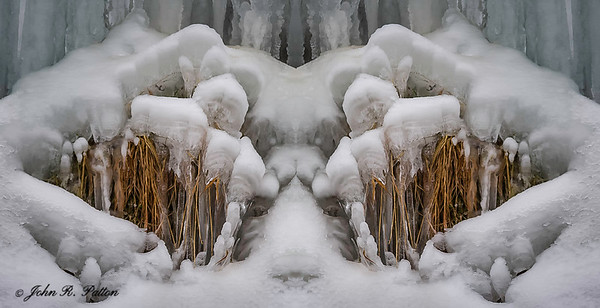 Abstract, mirrored ice and plants