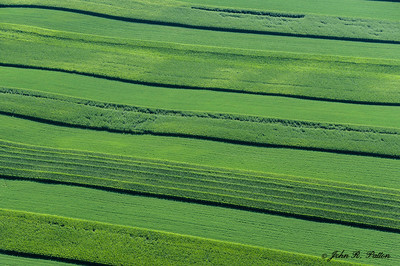 Farm fields aerial
