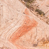 Bushes in a steep gully and streaks of color in the rock make up this design, Grand Staircase-Escalante National Monument, Utah.