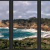 Point Lobos View