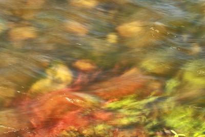 A Shallow Flow