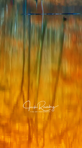 """""""Yellow Water Reflections'"""