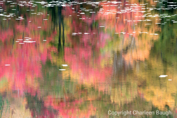 Pink and Green Fall Reflections