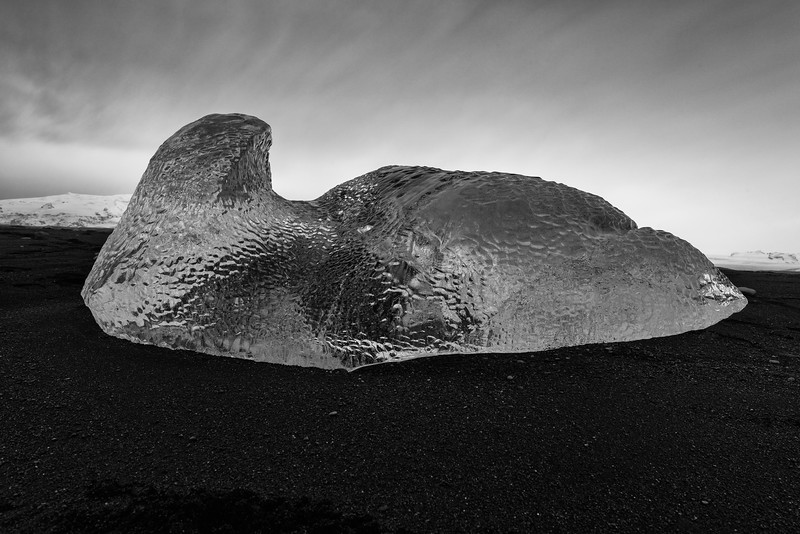 Seal-shaped Iceberg on black sand beach at Jökulsárlón Glacier lagoon, Iceland