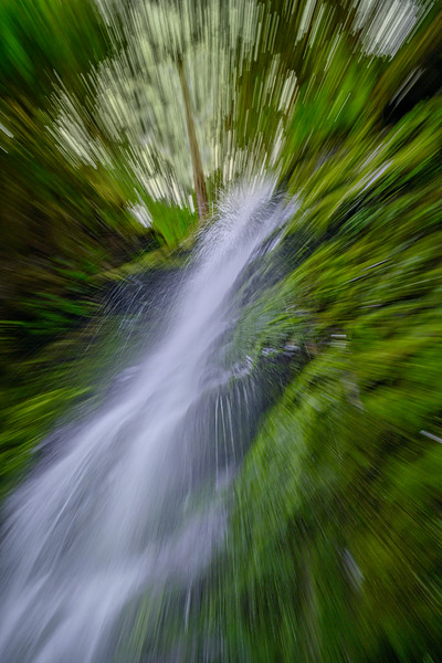 Zoom burst motion of Bunch Falls in the Quinault Rain Forest, Olympic National Park, Washington State