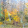Fall As Seem Through a Rainy Car Window in the Adirondacks, Upstate New York