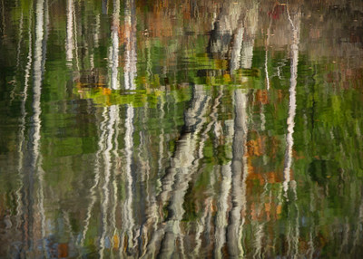 Reflections in a Pond #3
