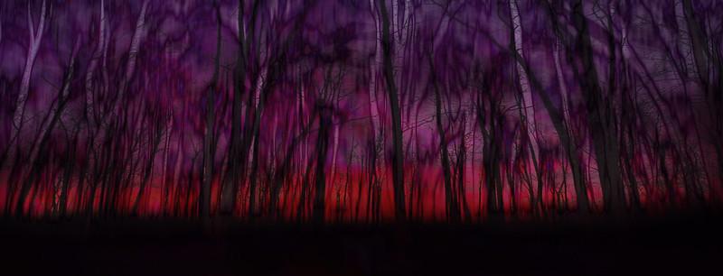 Purpura Magenta Sky
