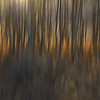 Aspen Abstract No. 1